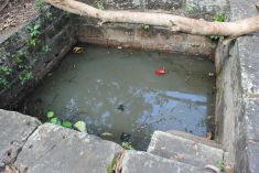 The well at Konark Abadhut Ashram from where Taamrapothi was recovered